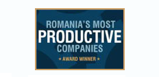 Romania's Most Productive Companies